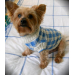 Superb 44 Pictures Dog Knitting Patterns Free