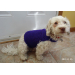 Adorable 48 Images Free Crochet Pattern for Small Dog Sweater