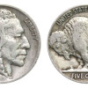 Lovely 49 Models Buffalo Nickel Worth