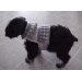 Gorgeous 40 Images Crochet Dog Sweater with Legs