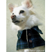 Marvelous 45 Photos Dog Jacket Pattern