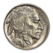 Lovely 42 Images Buffalo Nickel E
