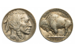 Adorable 49 Pictures Buffalo Head Nickel Worth