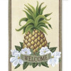 Contemporary 40 Models Pineapple Home Accessories