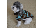 Contemporary 43 Ideas Small Dog Clothes Patterns