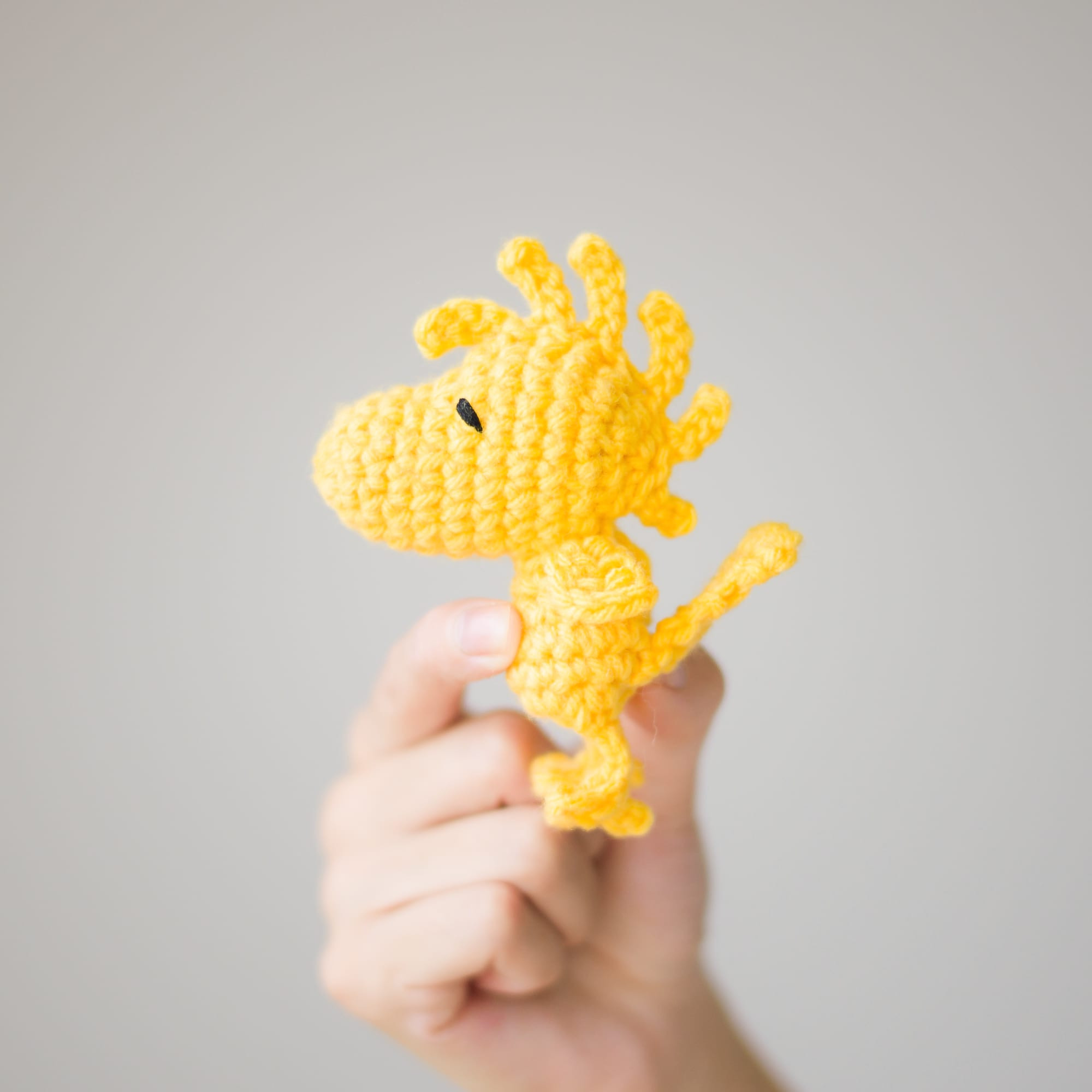 Woodstock Peanuts Crochet Kit Review & GIVEAWAY All