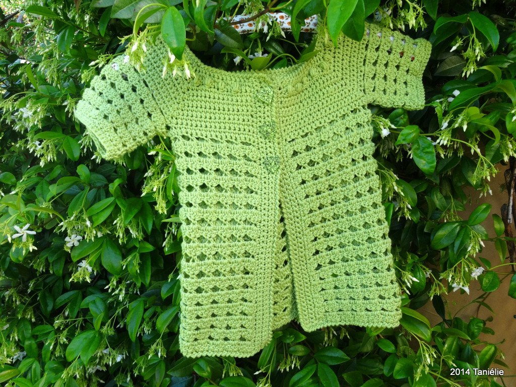 5.5 Crochet Hook Lovely Citronnelle Un Cardigan Au Crochet Pour Petite Fille Of Innovative 44 Models 5.5 Crochet Hook