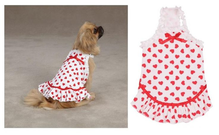 1000 ideas about Dog Clothes Patterns on Pinterest