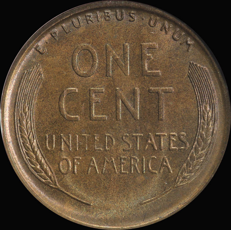 Awesome 1919 S Lincoln Head Cent Anacs Ms65bn D & J Coins Lincoln Head Penny Of Great 48 Models Lincoln Head Penny