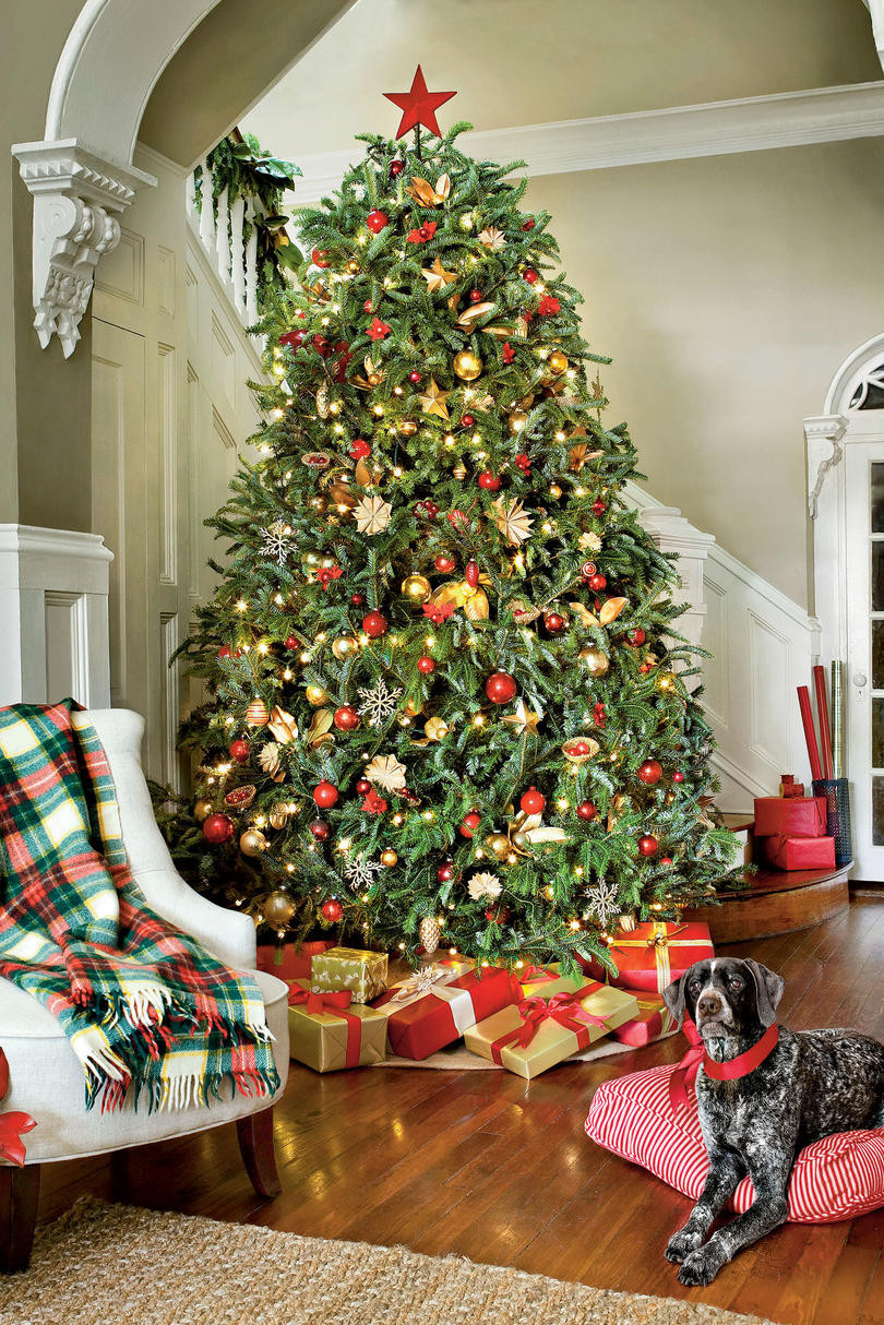 Awesome Christmas Tree Decorating Ideas southern Living Christmas Tree and Decorations Of Delightful 50 Pictures Christmas Tree and Decorations