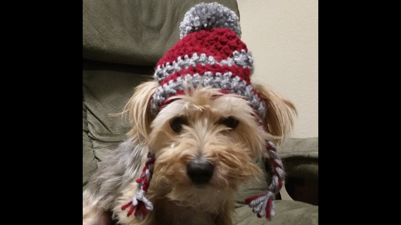 Awesome Crochet Hat for Dogs Tutorial Crochet Dog Hat Of Marvelous 45 Pictures Crochet Dog Hat