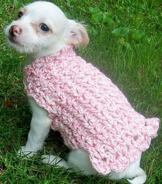 Awesome Crochet Pattern Adorable Dog Sweater Easy Crochet Dog Sweater Pattern Free Of New 48 Images Easy Crochet Dog Sweater Pattern Free