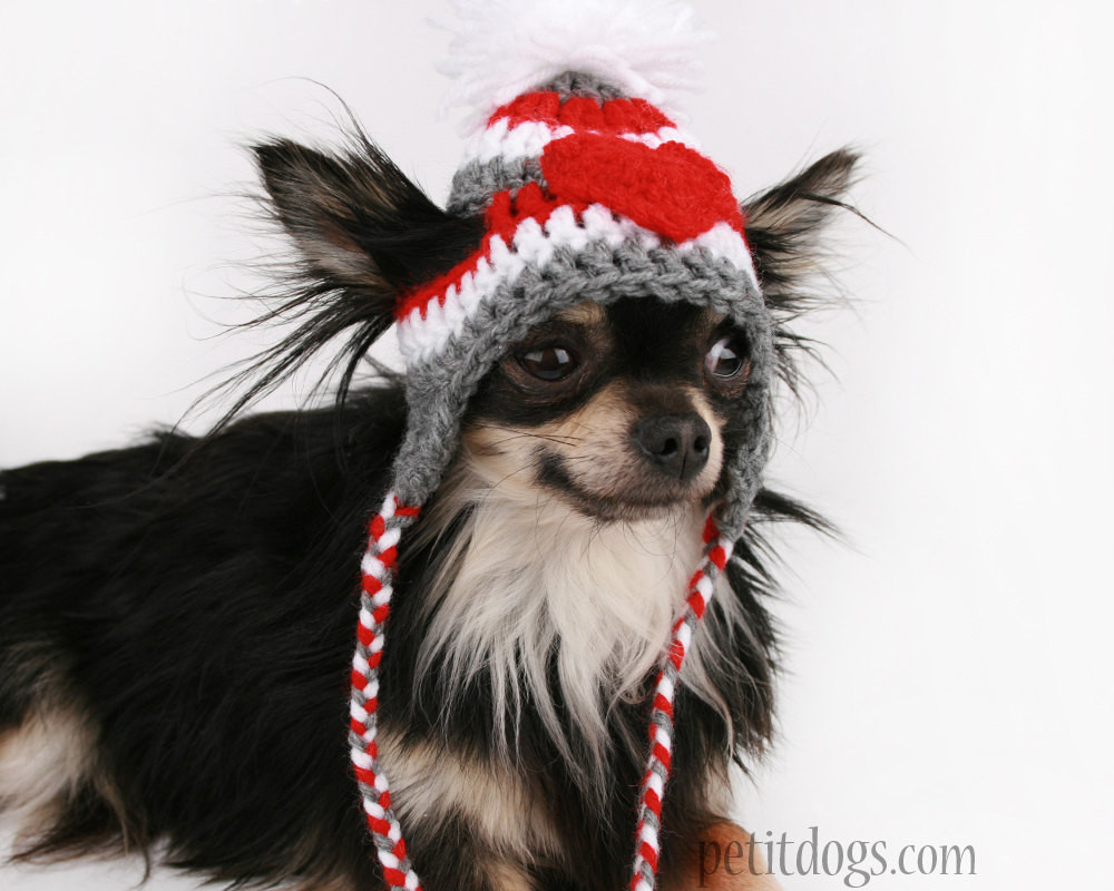 Awesome Dog Hat Crochet Red and Grey Heart Stripe Ear by Crochet Dog Hat Of Marvelous 45 Pictures Crochet Dog Hat