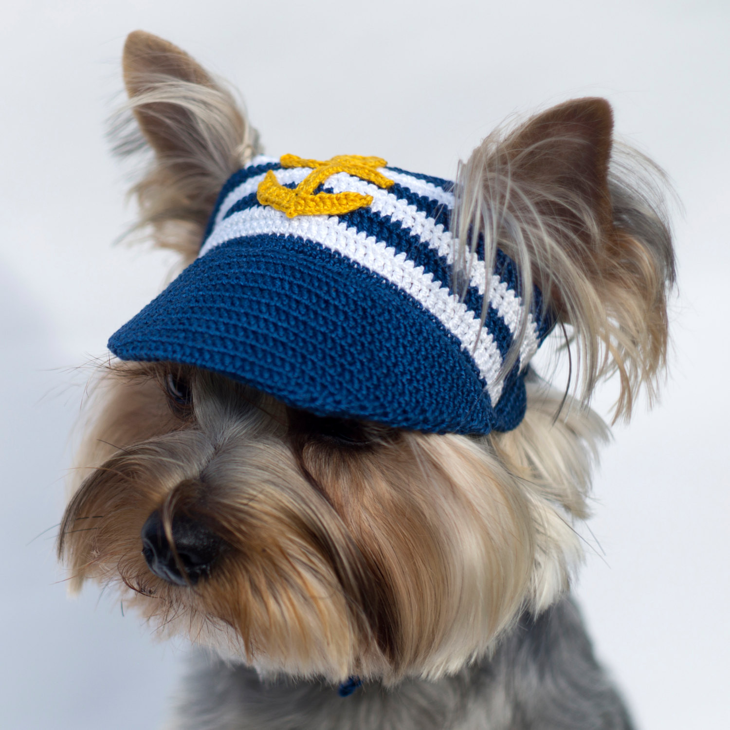 Awesome Dog S Baseball Cap Anchor Hats for Dogs Crochet Dog Hat Of Marvelous 45 Pictures Crochet Dog Hat