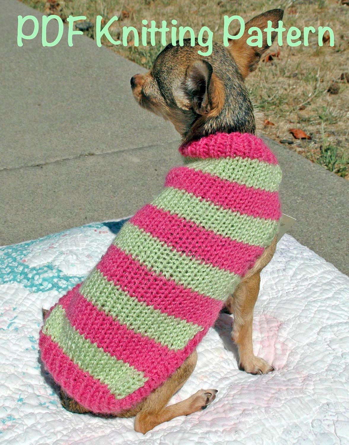 Awesome Easy & Cute Dog Sweater Knitting Pattern From Knitting Patterns for Dog Sweaters for Beginners Of Luxury 41 Pictures Knitting Patterns for Dog Sweaters for Beginners