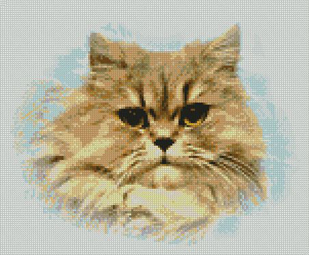 """Awesome Persian Cat Counted Cross Stitch Kit 11""""x 9"""" 27cm X22cm Cat Cross Stitch Kits Of Perfect 42 Pics Cat Cross Stitch Kits"""