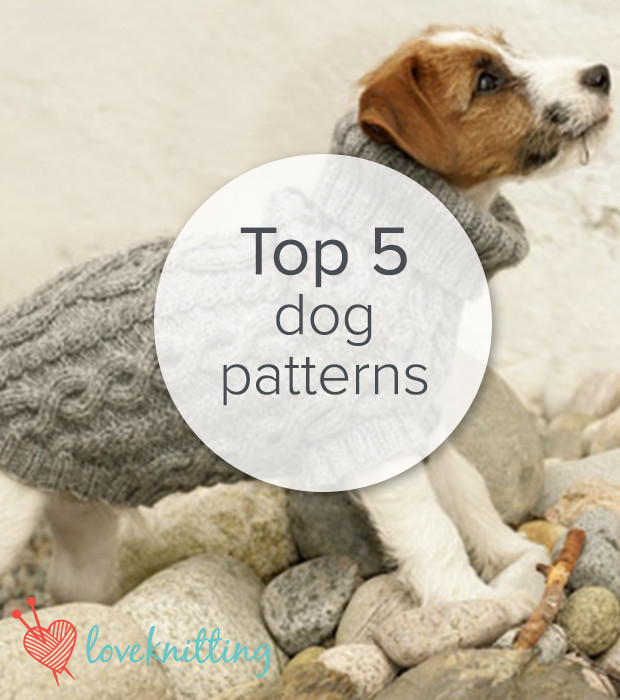 Awesome top 5 Free Dog Patterns On Loveknitting Free Knitting Pattern for Dog Sweater Of Amazing 49 Photos Free Knitting Pattern for Dog Sweater