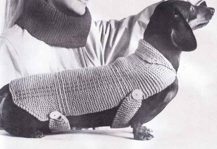 Awesome Very Easy Knit Stitch Dachshund Dog Blanket Sweater Coat Knitting Patterns for Dog Sweaters for Beginners Of Luxury 41 Pictures Knitting Patterns for Dog Sweaters for Beginners