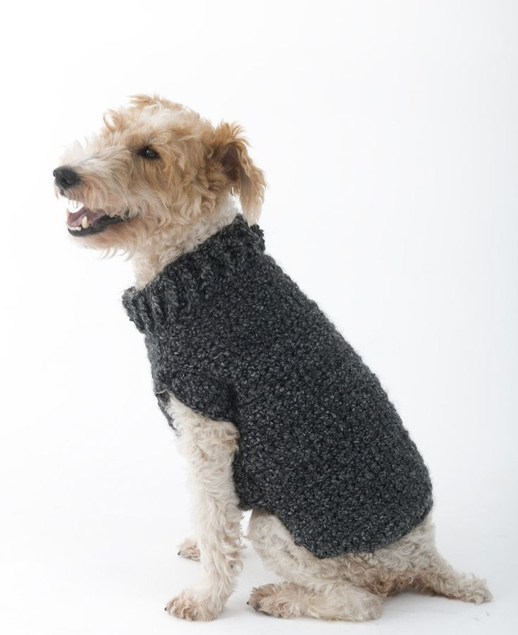 Beautiful 50 Best Knitting Patterns for Dogs Images On Pinterest Easy Knit Dog Sweater Of Charming 49 Ideas Easy Knit Dog Sweater