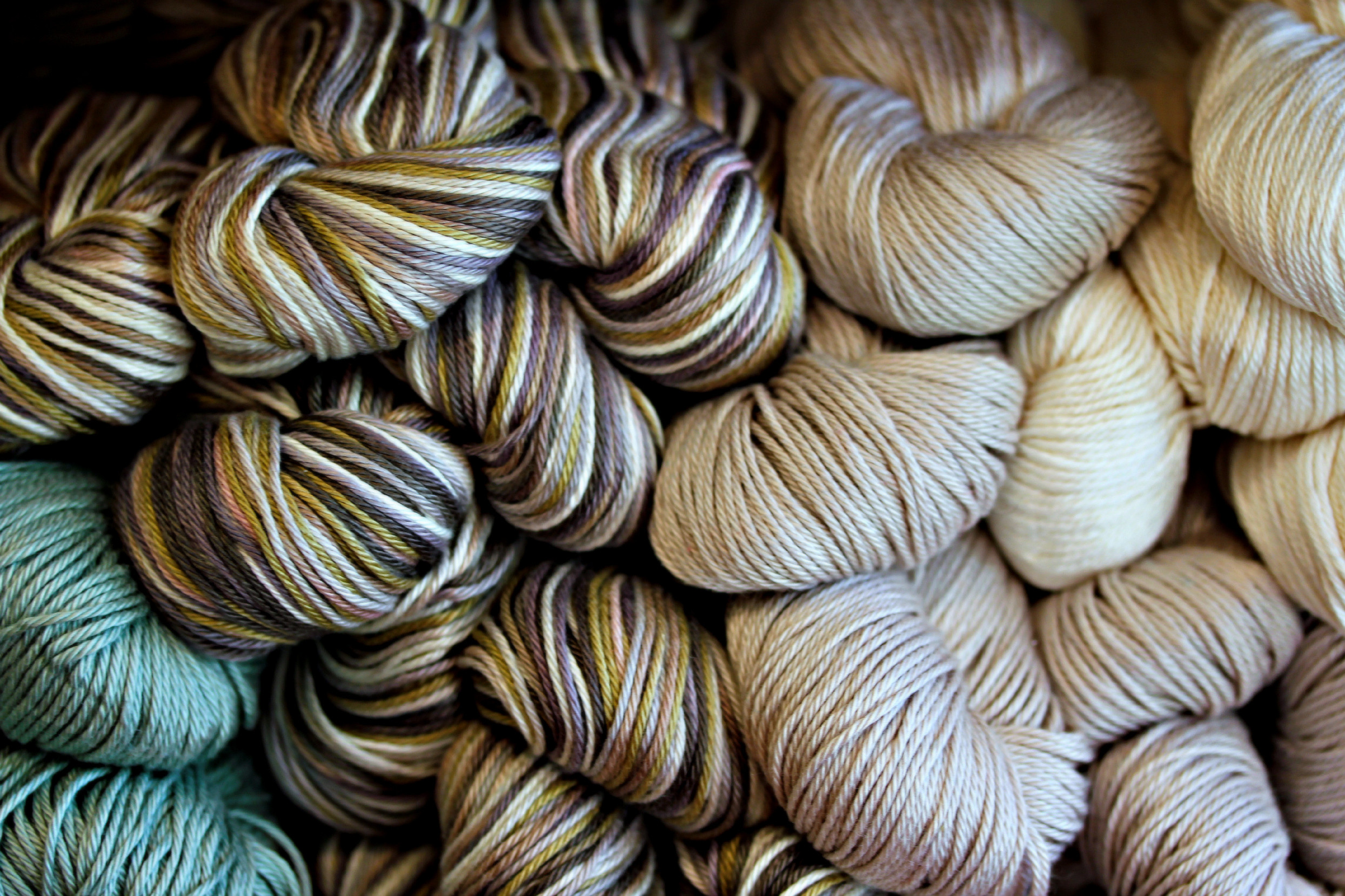 A Look Inside Our Shop – Whippletree Yarn Shop