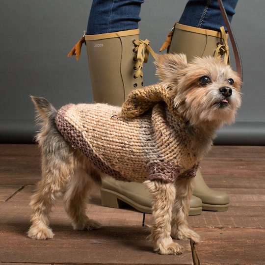Beautiful Caron Sprinkle Cakes™ Knit Hoo Dog Coat In Pecan Fudge Caron Sprinkle Cakes Of Incredible 47 Ideas Caron Sprinkle Cakes