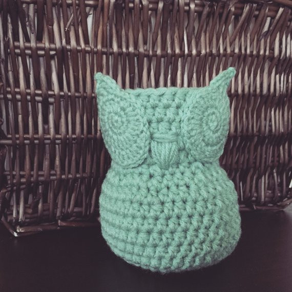 Beautiful Mint Green Miniature Crochet Owl Basket Home Decor Owl Crochet Owl Basket Of Brilliant 47 Photos Crochet Owl Basket
