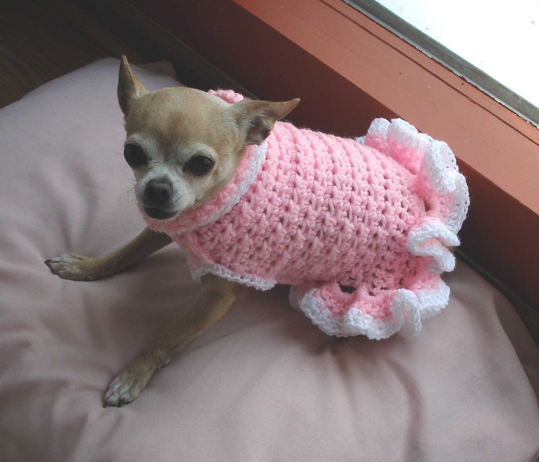 Beautiful Pdf Crochet Pattern Cha Cha Dog Sweater Dress by Ozarknomad Free Crochet Pattern for Small Dog Sweater Of Adorable 48 Images Free Crochet Pattern for Small Dog Sweater