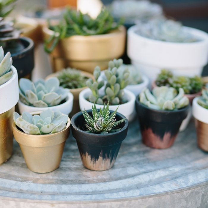 Beautiful Planters Outstanding Ceramic Pots for Sale Ceramic Pottery Clay for Sale Of Unique 40 Ideas Pottery Clay for Sale