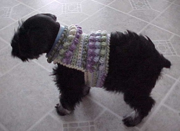 Beautiful the Best Sweaters and Coats to Crochet for Your Dog – Free Easy Crochet Dog Sweater Pattern Free Of New 48 Images Easy Crochet Dog Sweater Pattern Free