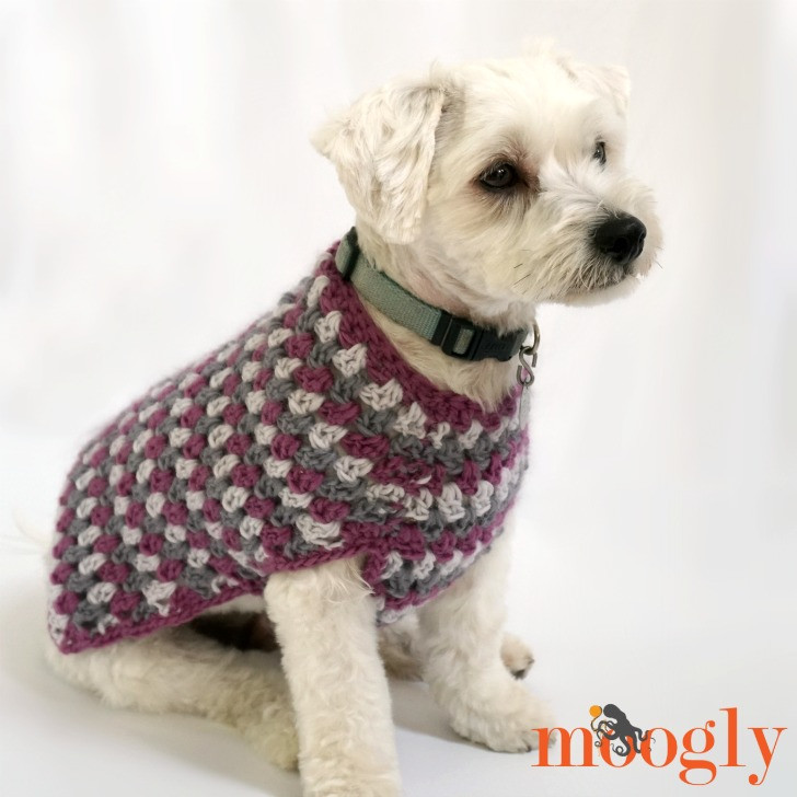 Beautiful Well Dressed Dog Coat Moogly Free Crochet Pattern for Small Dog Sweater Of Adorable 48 Images Free Crochet Pattern for Small Dog Sweater