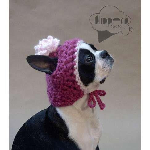 Best Of 127 Best Images About Critter Knits and Crochet Patterns Knitted Dog Hats Of Innovative 49 Images Knitted Dog Hats