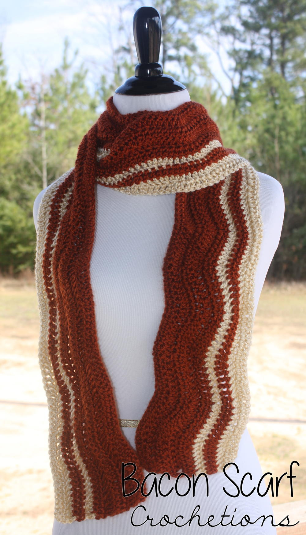 Best Of Bacon Crochet Scarf Crochet Scarves Of Amazing 43 Photos Crochet Scarves