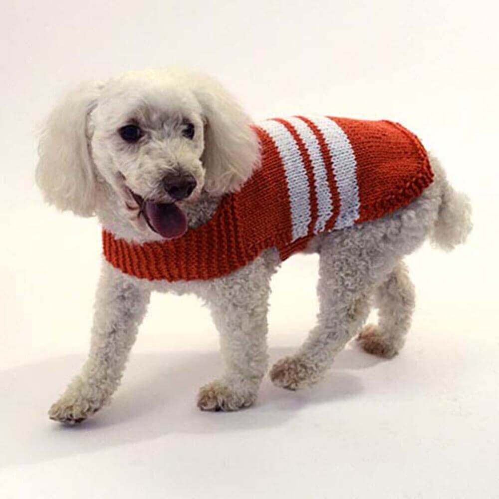 Best Of Knit Collegiate Dog Sweater [free Knitting Pattern] Dog Knitting Patterns Free Of Superb 44 Pictures Dog Knitting Patterns Free