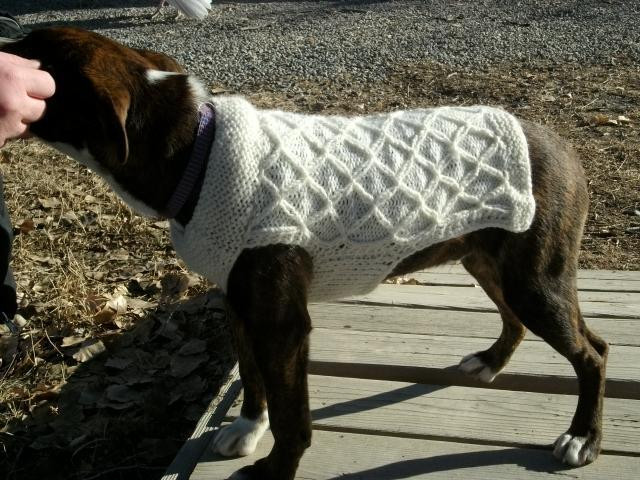 Best Of Knit Dog Sweater by Copper Llama Easy Knit Dog Sweater Of Charming 49 Ideas Easy Knit Dog Sweater