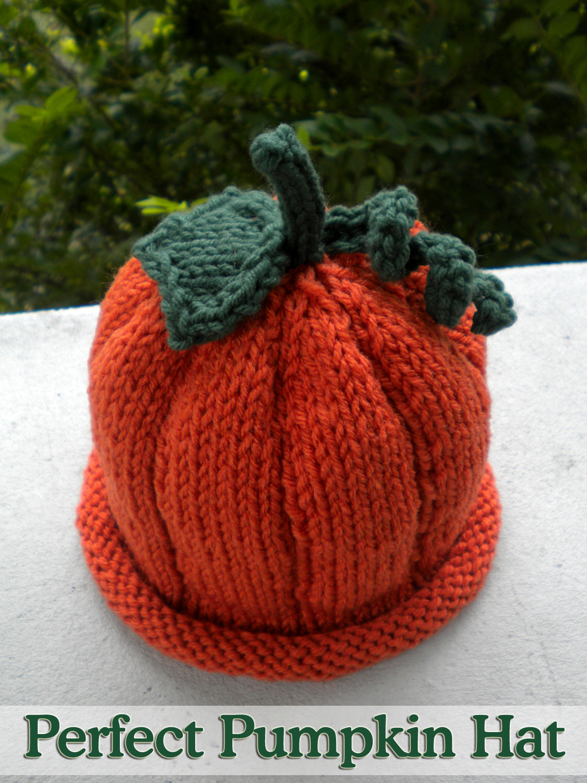 Perfect Pumpkin Hat done 2 Needles Knitting Pattern