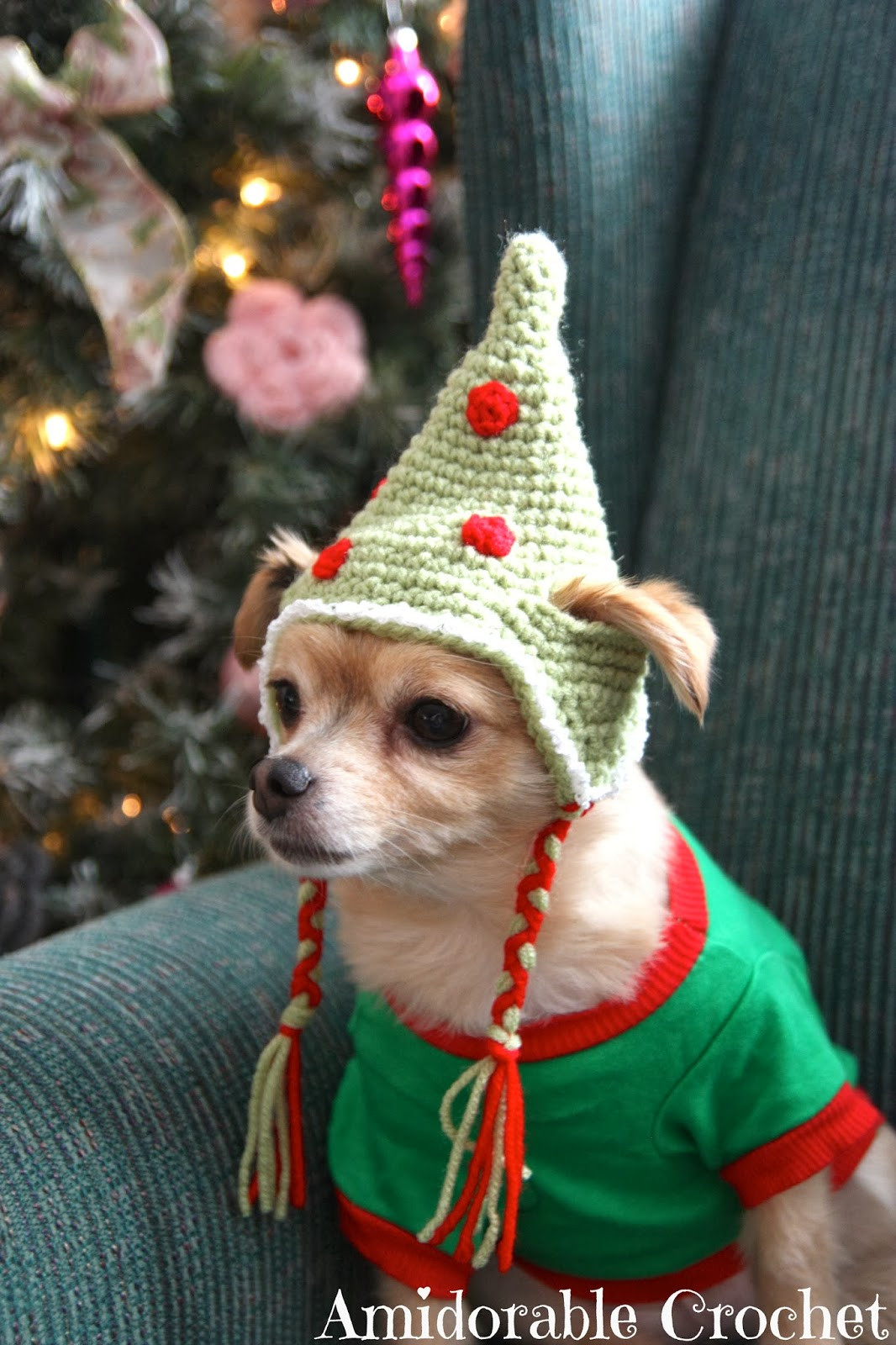 Best Of these Free Crochet Patterns Will Give You the Best Dressed Crochet Dog Hat Of Marvelous 45 Pictures Crochet Dog Hat