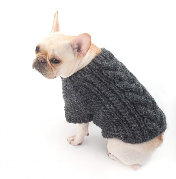 Best Of top 5 Free Dog Sweater Knitting Patterns Dog Knitting Patterns Free Of Superb 44 Pictures Dog Knitting Patterns Free