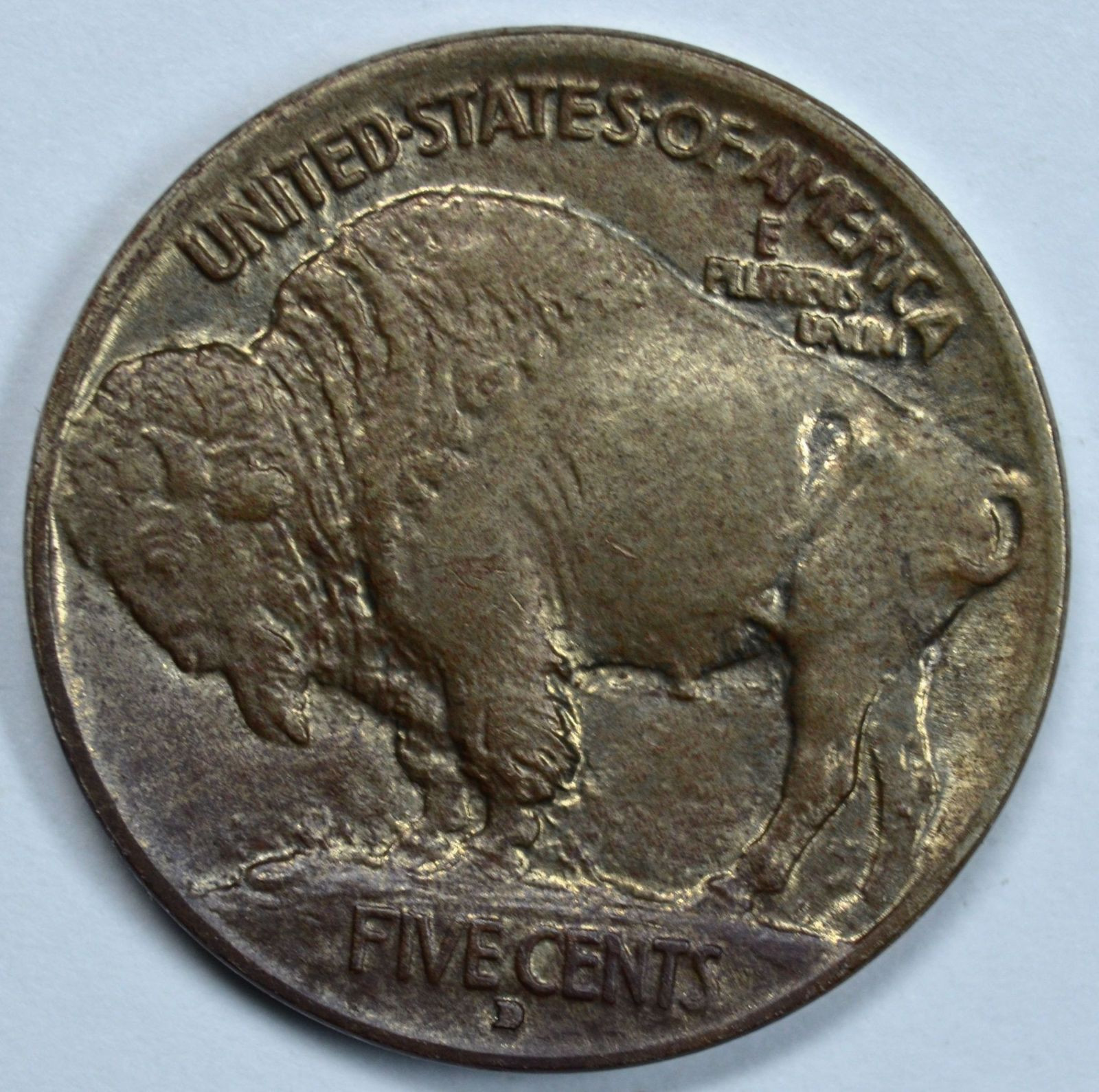 Buffalo Nickel Beautiful 1913 D Buffalo Uncirculated Nickel Type 1 Raised Mound Ms Of Beautiful 46 Models Buffalo Nickel