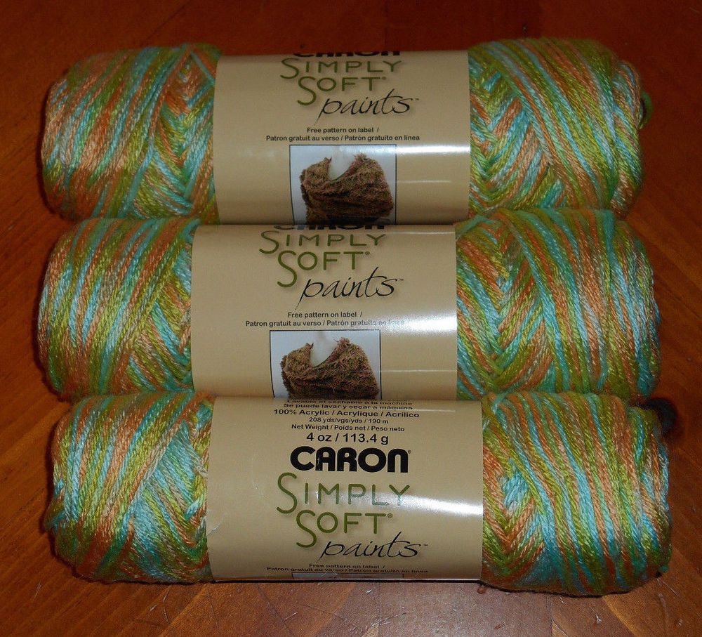 """Caron Simply Soft """"Paints"""" Yarn Lot 3 Skeins Charisma"""