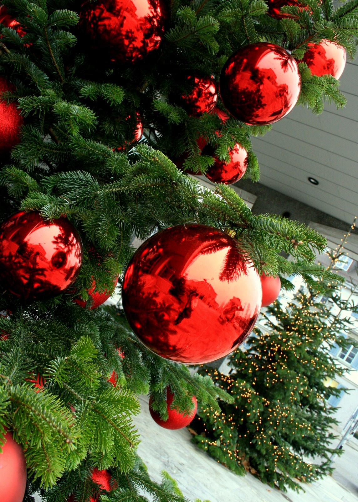 Stunning Christmas Decorations Ideas for This Year
