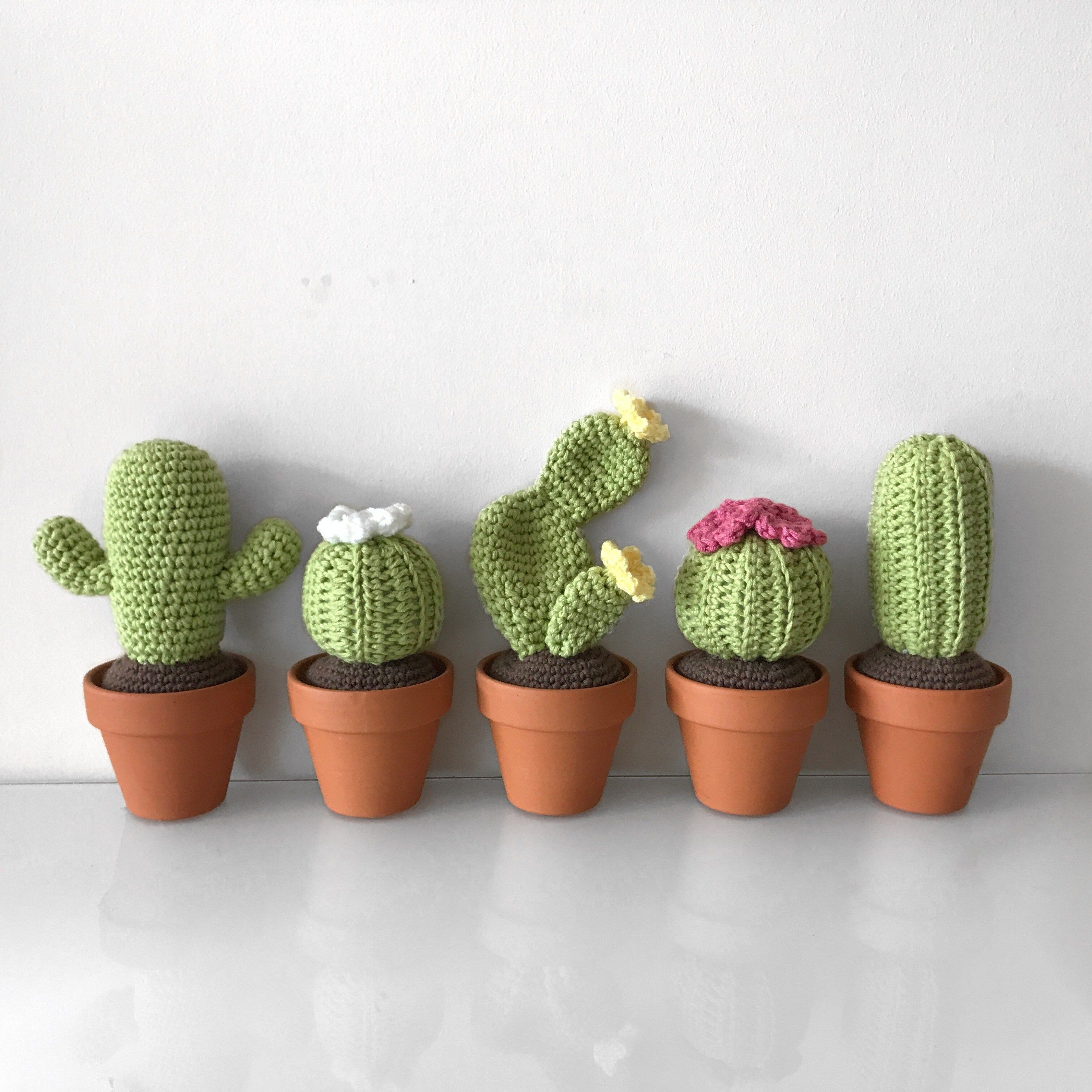 Crochet Cactus Free Pattern Awesome In This 4 Part Mini Series I Will Be Giving You 4 Detailed Of Great 40 Pictures Crochet Cactus Free Pattern
