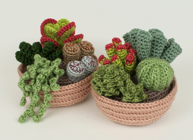 Crochet Cactus Pattern Lovely Succulent Collections 1 and 2 Eight Crochet Patterns Of Lovely 40 Models Crochet Cactus Pattern