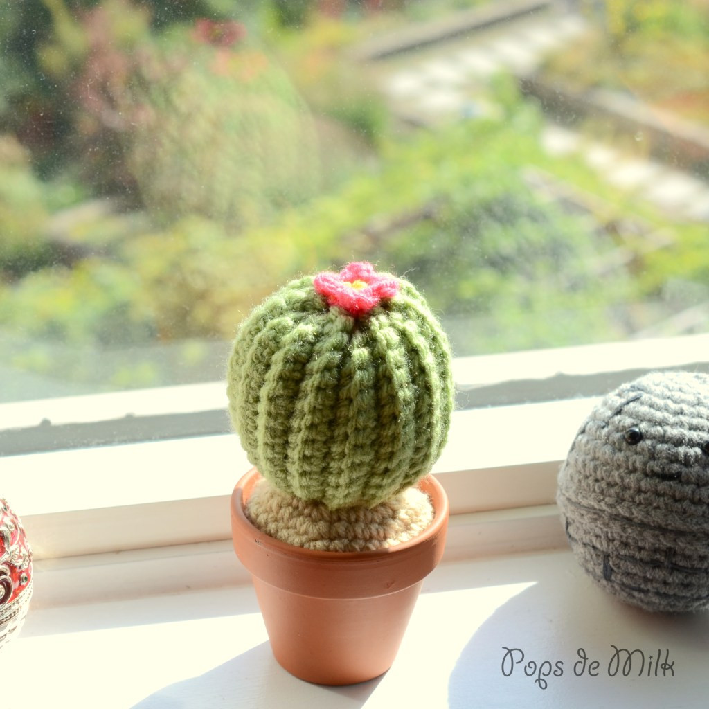 Crochet Cactus Pattern Lovely Yarn Garden Addition Crochet Cactus Pattern Of Lovely 40 Models Crochet Cactus Pattern