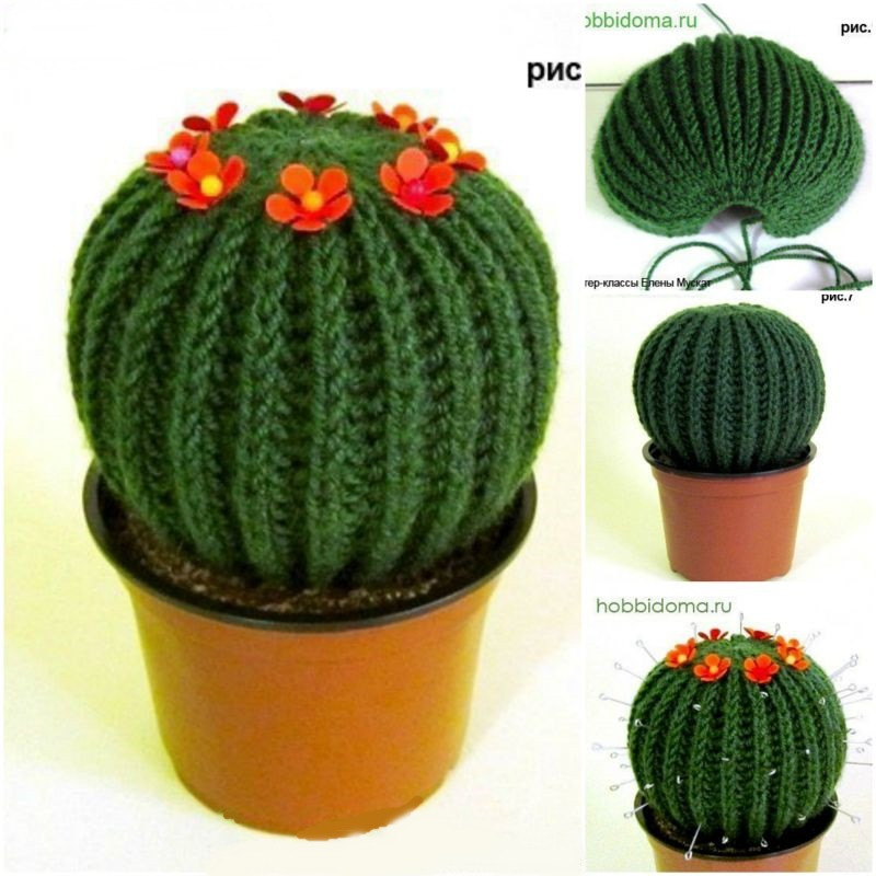 Crochet Cactus Pattern New Knit Cacti – Craftbnb Of Lovely 40 Models Crochet Cactus Pattern