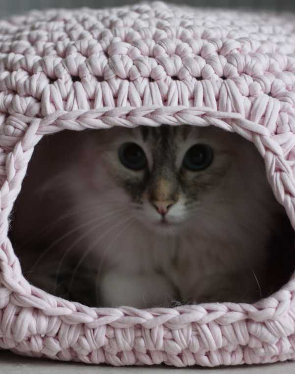 Crochet Cat House Beautiful Fast Five and Sew We Craft Of Crochet Cat House