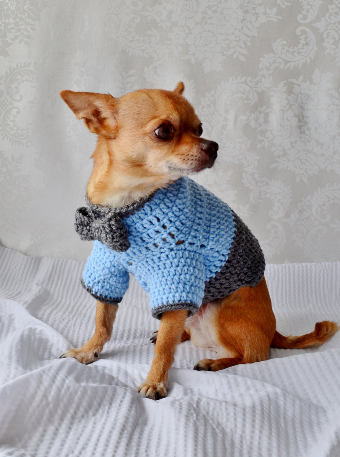Crochet Dog Awesome Crochet Dog Sweater Dog Sweater with Bow the Oxford Dog Of Perfect 50 Images Crochet Dog