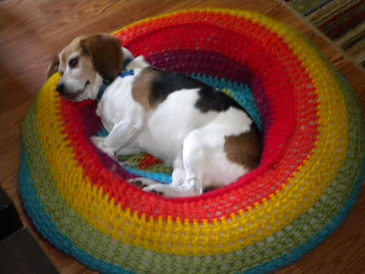Crochet Dog Beds Awesome Crochet Rainbow Dog Bed Maybe with A Pool Noodle as Of Charming 50 Ideas Crochet Dog Beds