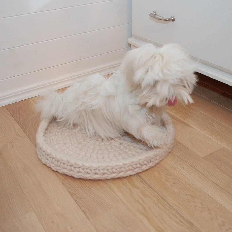 Crochet Dog Beds Awesome Pet Bed Wool Crochet Crochet Cat Bed Wool Dog Bed Of Charming 50 Ideas Crochet Dog Beds