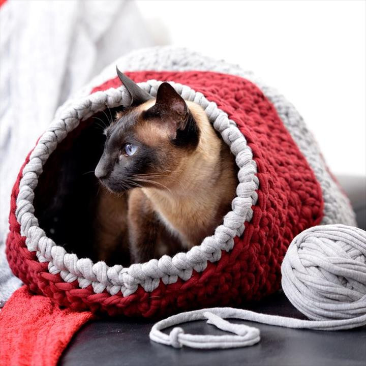 Crochet Dog Beds Best Of 15 Amazing Crocheted Pet Bed Design Of Charming 50 Ideas Crochet Dog Beds