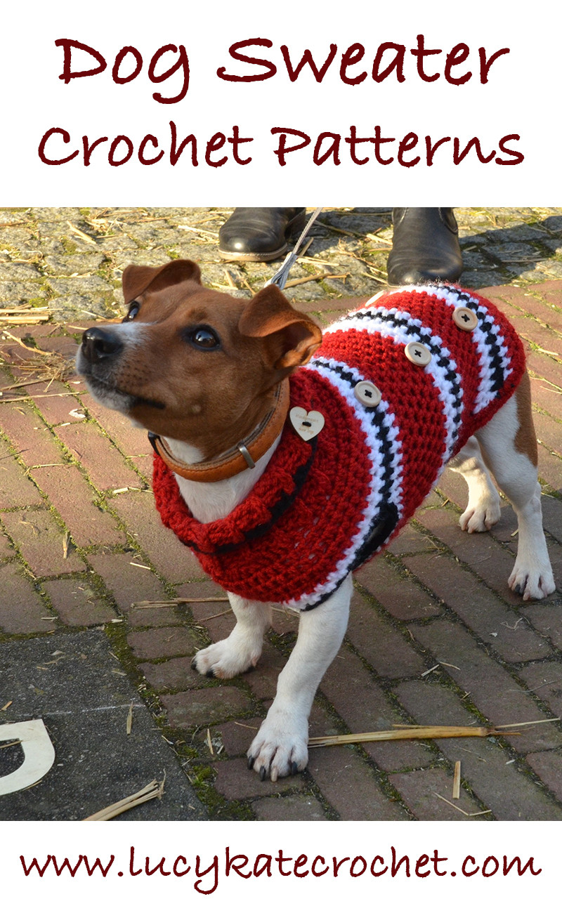 A Guide To The Best Free Crochet Dog Sweater Patterns by